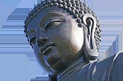 TrướcSau Bốn Mươi Lăm Năm Hoằng Pháp Của Đức Phật